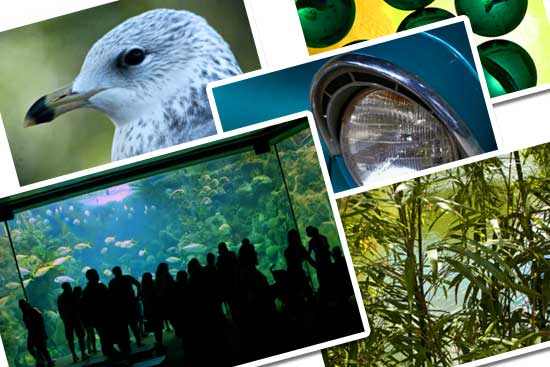 Collage of stock photos from the ClipPix website.
